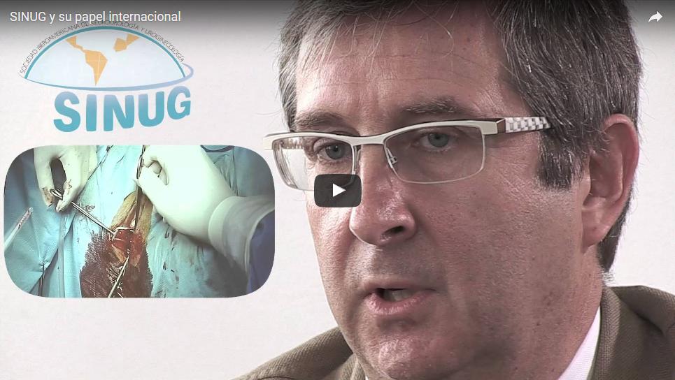 01/10/2014 – La SINUG y su papel internacional
