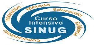 Curso Intensivo SINUG 2013